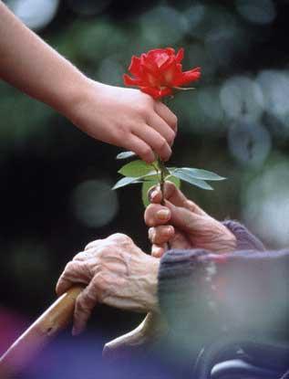 main-et-fleur